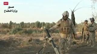 Video «USA verstärkt Truppen im Irak» abspielen