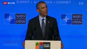 Video «Politbeobachter fordern milderen Umgang mit Putin» abspielen