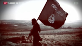 Video «Saudi-arabische Antiterrorallianz» abspielen