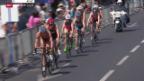 Video «Triathlon: EM in Genf, Wettkampf Frauen» abspielen