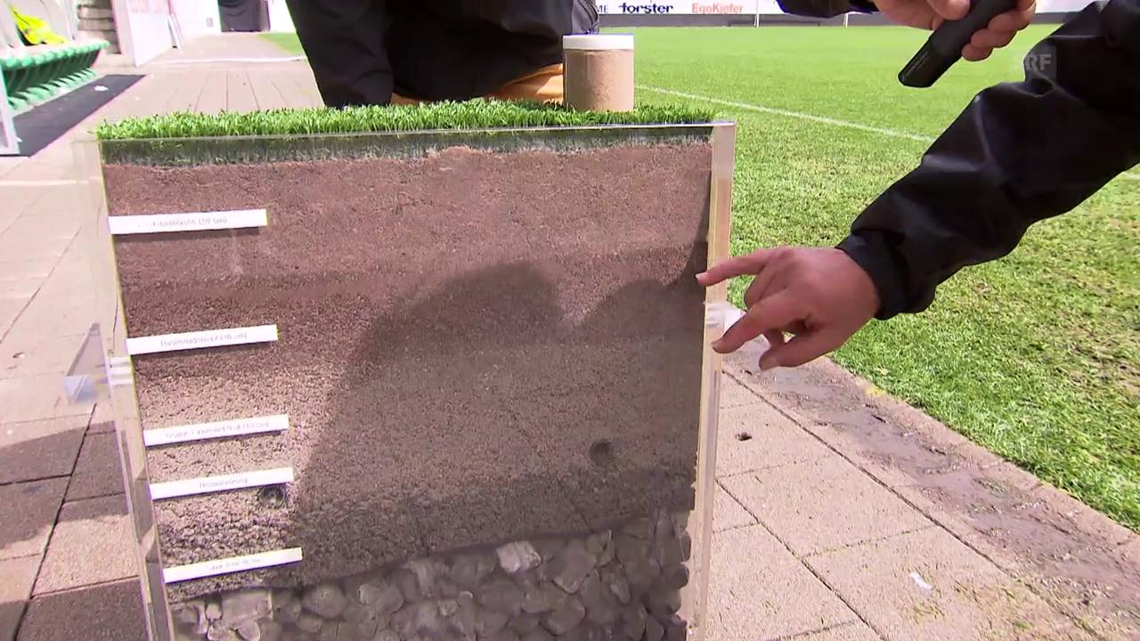 So ist der Rasen in St. Gallen aufgebaut
