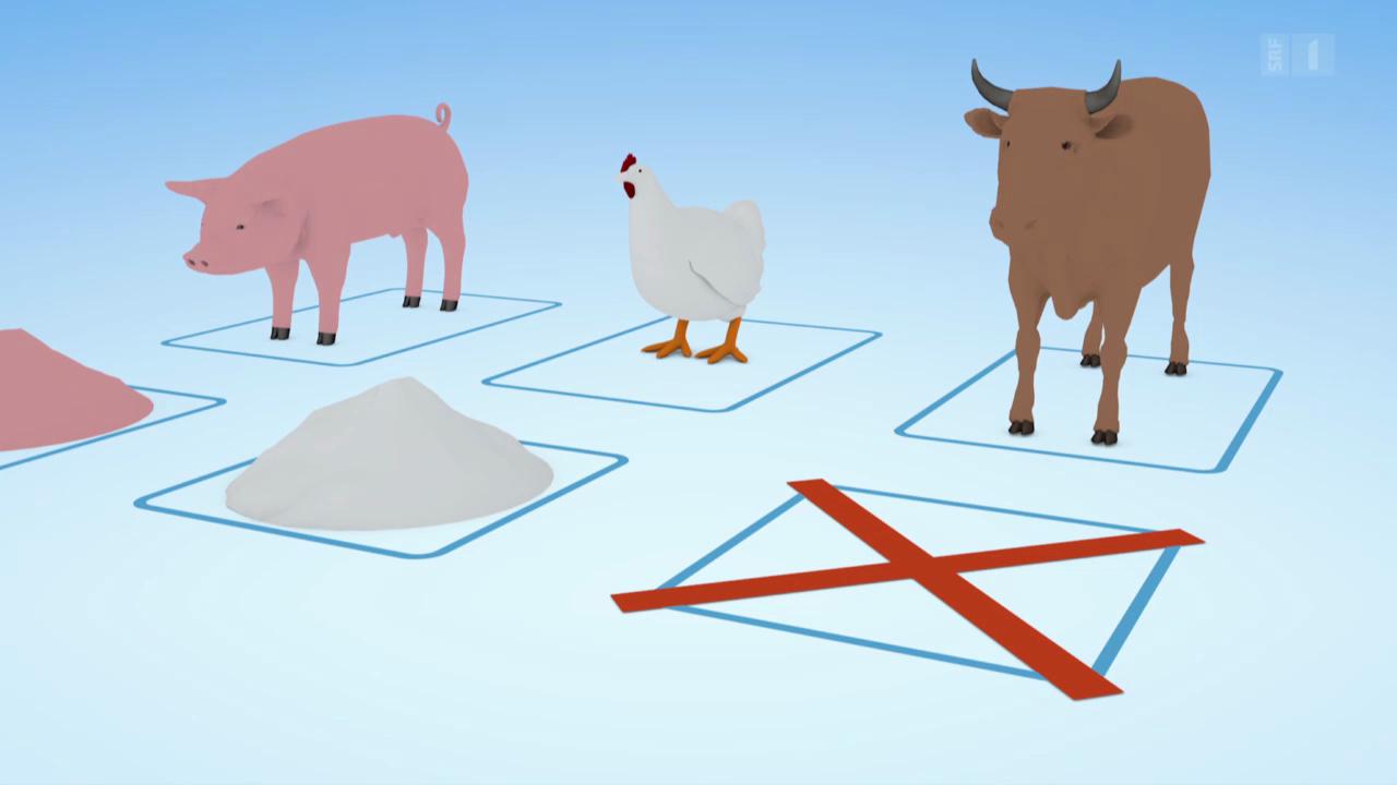 Tiermehl: So wird Kannibalismus vorgebeugt