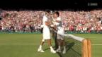 Video «Tennis: Wimbledon-Halbfinal Djokovic - Del Potro» abspielen