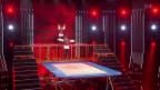 Video «Nando & Sascha Steger mit Trampolin-Akrobatik» abspielen
