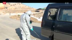 Video «Unklarheit über Giftgaseinsatz» abspielen