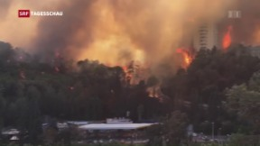 Video «Feuer-Terror in Israel» abspielen