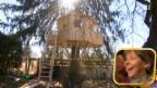 Video «Ein Baumhaus für Familie Kilchhofer» abspielen