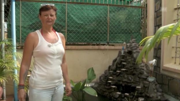 Video «Abschied von den Krokodilen» abspielen
