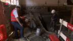 Video «Spuren von einer Siedlung aus der Bronzezeit» abspielen
