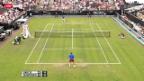 Video «ATP 's-Hertogenbosch: Wawrinka - Darcis» abspielen