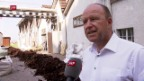 Video «Der Filzfabrikant und die Flüchtlinge» abspielen