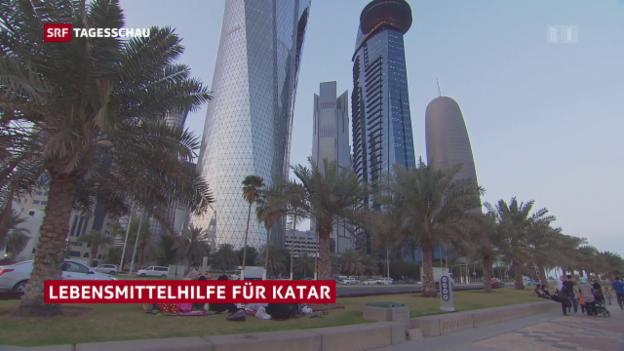 Video «Lebensmittelhilfe für Katar» abspielen