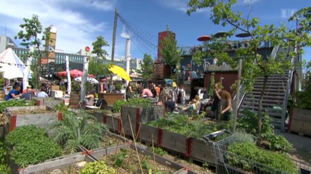 Video «Oase in der Stadt: «Frau Gerolds Garten» in Zürich» abspielen