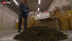 Video «Rekord-Drogenfund» abspielen