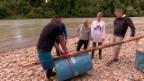 Video ««Das Goldene Floss» Folge 1» abspielen