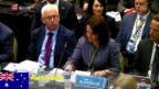 Video «FOKUS: Start der Walfang-Konferenz» abspielen