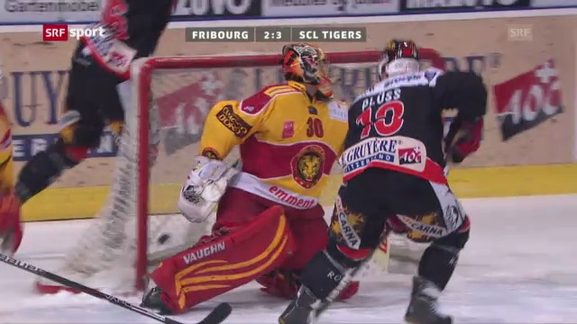 Eishockey: Fribourg - SCL Tigers