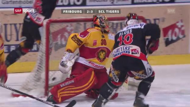 Video «Eishockey: Fribourg - SCL Tigers» abspielen