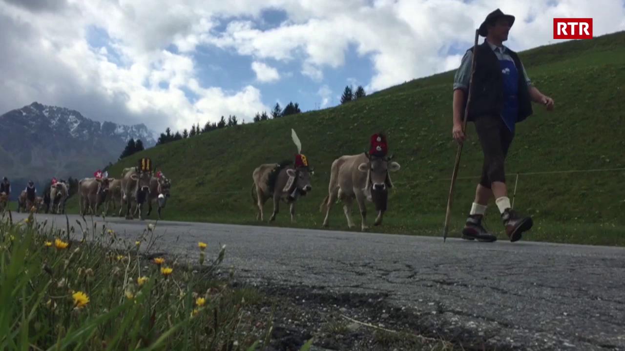 400 visitaders a la stgargiada d'alp da Parsonz