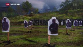 Video «Krieg und Tote stehen im Zentrum einer Ausstellung in Zürich» abspielen