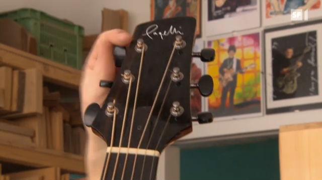 Händler ignorieren Raubbau für Gitarren