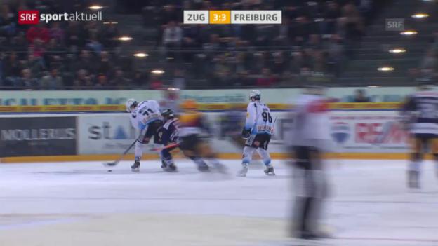 Video «Eishockey: Das kuriose Eigentor von Niklas Hagman («sportaktuell» vom 25.02.2014)» abspielen