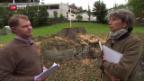 Video «Gefällte Linde erhitzt die Gemüter» abspielen