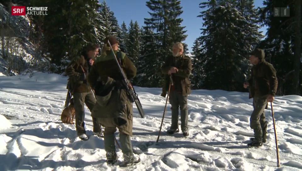 Graubünden untersucht Hirsche