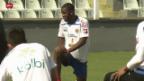 Video «Wm 2014: Vorschau auf den Achtelfinal Costa Rica - Griechenland» abspielen