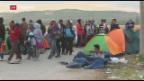 Video «Zahl der Asylgesuche 2016 gesunken» abspielen