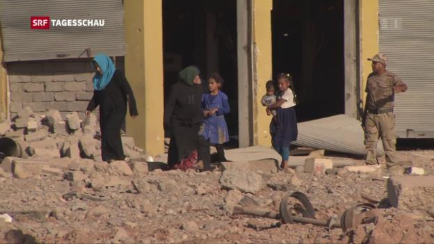 Video «Bewohner von Mossul flüchten aus der Stadt» abspielen