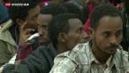 Video «Immer mehr Flüchtlinge aus Eritrea» abspielen
