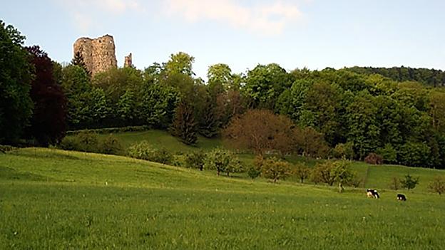 Burgruinen – erhalten oder zerfallen lassen? Burgenexperten antworten.