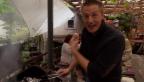 Video «Ivo Adam: Der Starkoch ist Vater geworden» abspielen