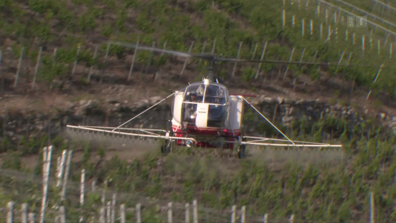 Illegaler Pestizideinsatz: Behörden schauen weg