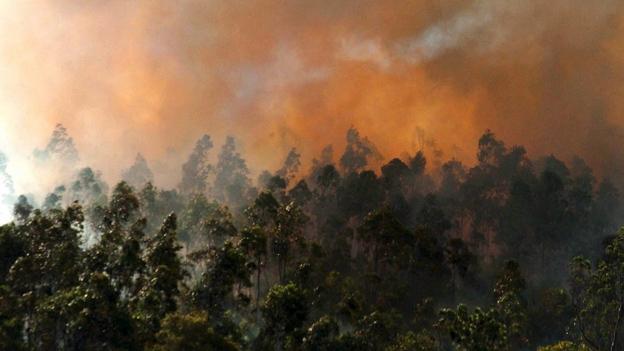 Radio SRF-Korrespondent Urs Wälterlin spricht über die Hitze und die Brände in Australien.