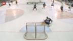 Video «Eishockey: EV Zug - Lugano» abspielen