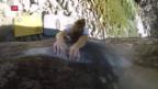 Video «Outdoor-Klettern mit Petra Klingler» abspielen