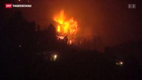 Video «Waldbrände in Portugal» abspielen