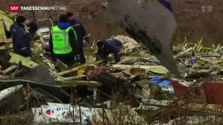 Video «MH17 Untersuchung» abspielen