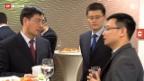 Video «China investiert in Solar-Firmen» abspielen