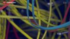 Video «Flächendeckende Kontrolle ist illusorisch» abspielen