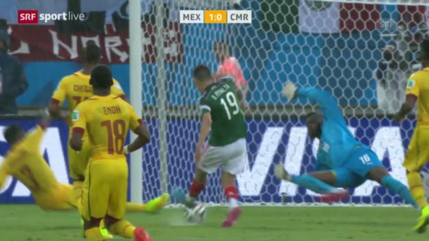 Video «Spielbericht Mexiko - Kamerun» abspielen