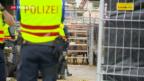 Video «Pferdezucht in Hefenhofen geräumt» abspielen