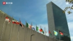 Video «Entscheidender Tag für Palästina» abspielen