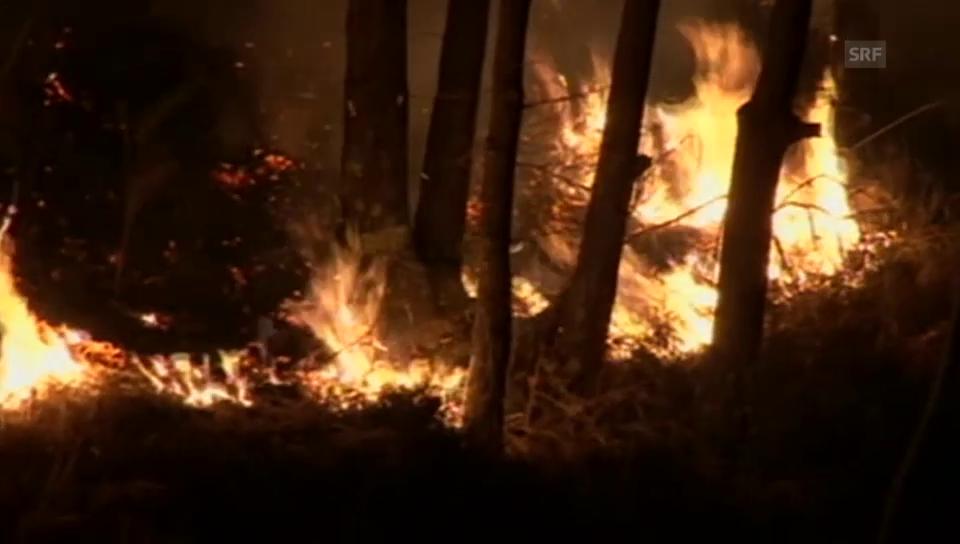 Im Valle Vigezzo lodern die Flammen (unkomm.)