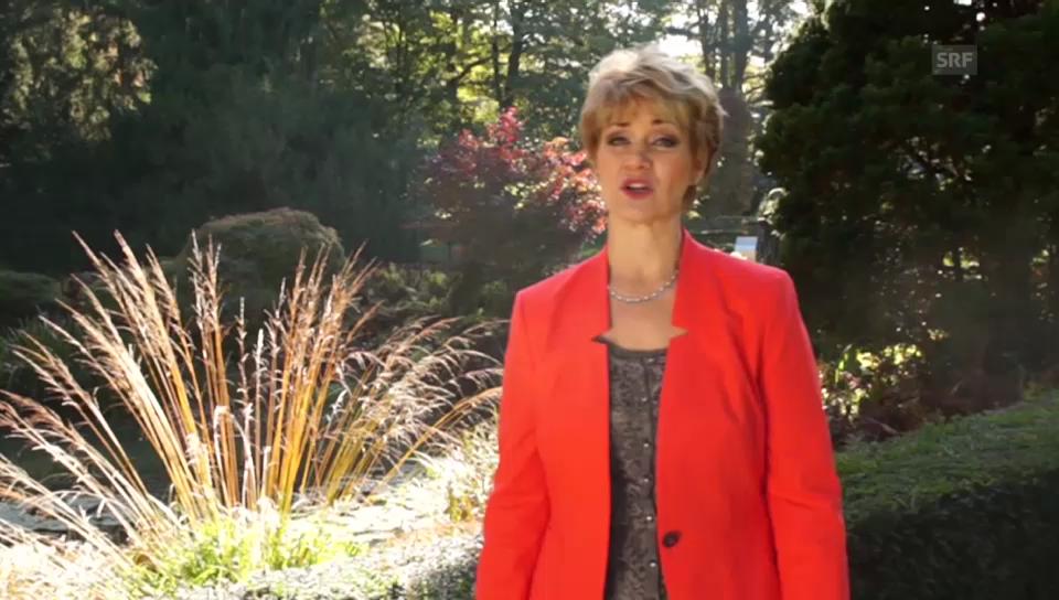 Bewerbungsvideo von Maya Wirz