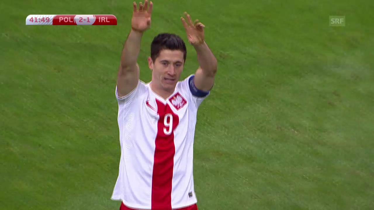 Fussball: EM-Quali, Zusammenfassung Polen - Irland