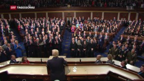 Video «Trumps erste «State of the Union»-Rede» abspielen