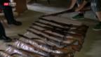 Video «50 Gewehre für Lenzburger Kadetten» abspielen